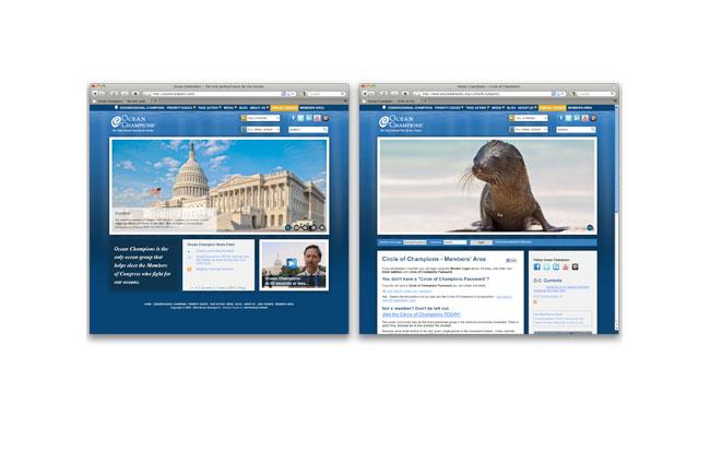 Ocean Champions Website